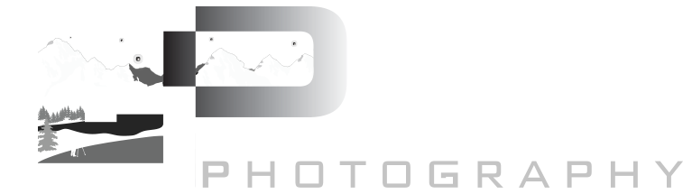 Goldpaint Photography