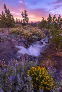 Mount-Shasta-Sunset