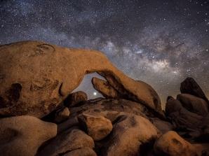 The Beginning: Joshua Tree National Park